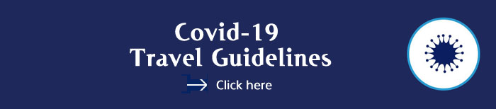 Covid-19 Travel Information